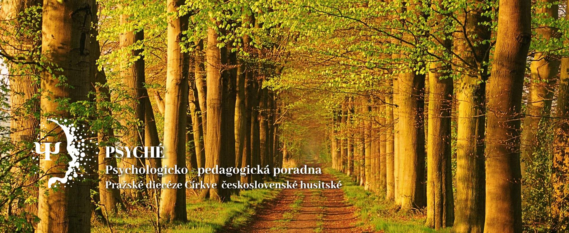 lesni_cesta